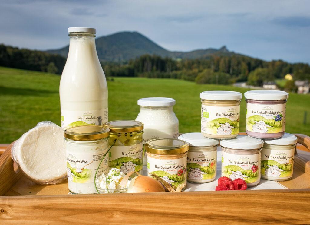 Bio Schafmilchprodukte vom Bauernhof - Erlebnisbauernhof Kehlbauer in Hof bei Salzburg